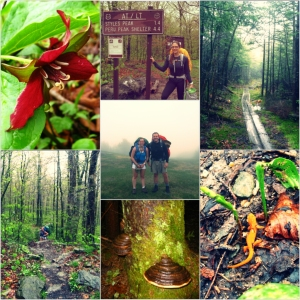 Hiking the Appalachian/Long Trail in Vermont with Hannah and John