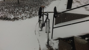 Riding in the snow can be peaceful and fun, before it gets salted and all serenity is destroyed by filthy traffic